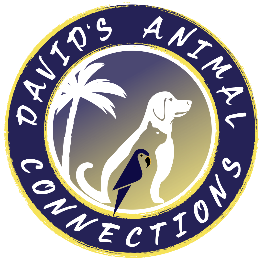 DAC | David's Animal Connections | Orlando's Non-Profit Animal Training  Company